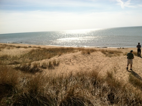 The beach on Lake Michigan in Saugatuck—looks like the ocean!