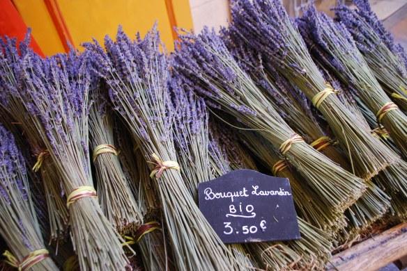 Organic lavender in Aix